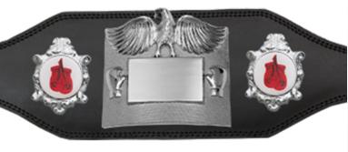 area title belt